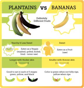 banana-v-plantain